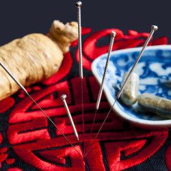 Acupuncture Continued Courses